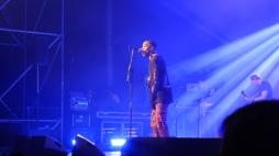 AfroPunk Paris 2017 - 11 - show concert